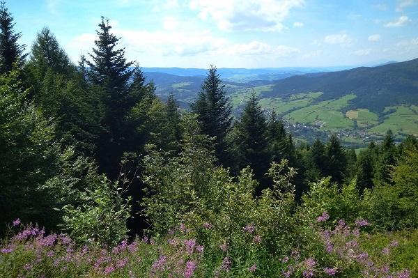Góry, Beskid Wyspowy, panorama nad Jurkowem, Widok z Łopienia